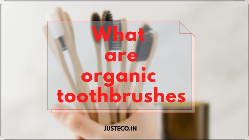 what are organic toothbrushes
